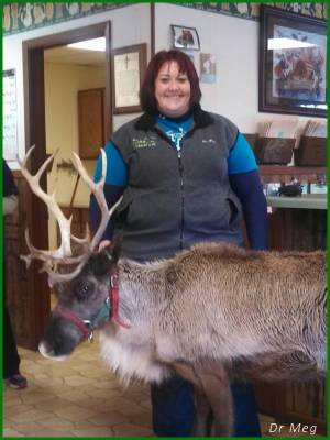 picture of dr meg mueller of osseo veterinary clinic with a raindeer
