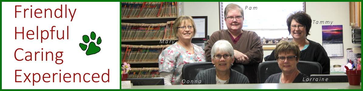 photo of staff at osseo veterinary clinic in osseo wisconsin